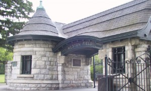 Weston Field Stone Gate 500 300