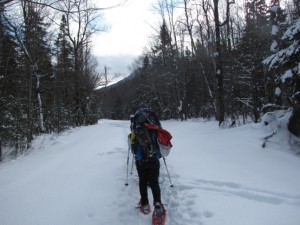 Zealand-Trail